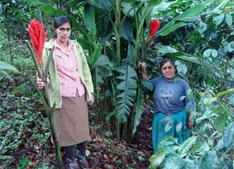 Cooperativa Divisoria y el floreciente negocio de sus socias