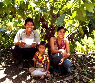 Una familia de productores de cacao de Oro Verde, se refugia del sol bajo una frondosa planta de cacao