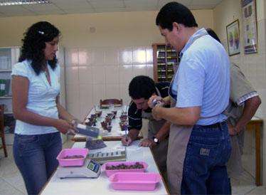 Mey Choy y sus clases para aprender a catar cacao